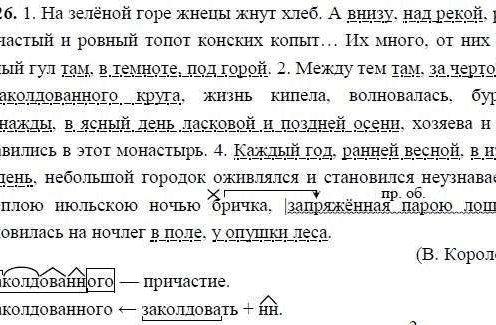 ГДЗ по русскому языку 8 класс